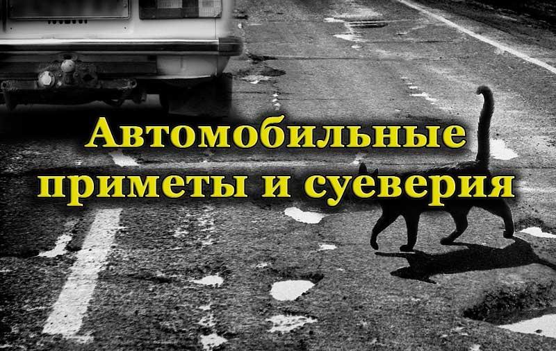 Черная кошка на дороге
